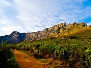 Der Tafelberg